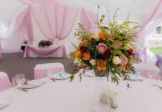 Арочные шатры для кафе img8680